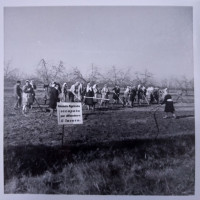 Occupazione terreni azienda agricola Bacci, Mezzano. Novembre 1969